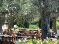 Cyprus Hotels: Anassa Hotel - Amphora Restaurant